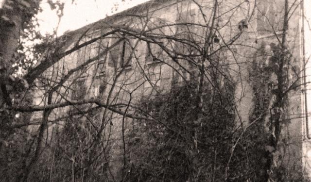 Villa-Magnoni.jpg