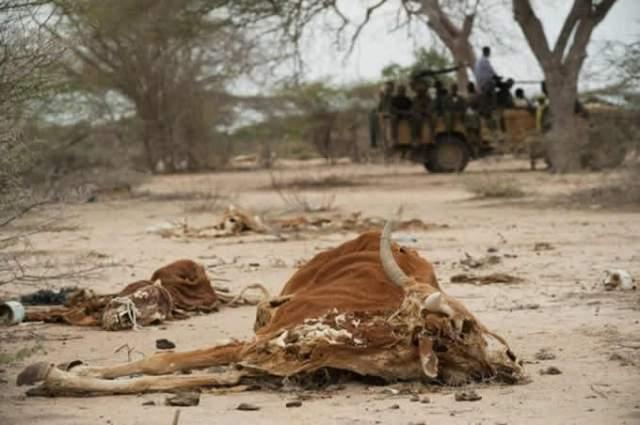 la-balla-del-controllo-del-clima-somalia-2-anni-senza-pioggia.jpg